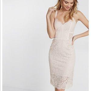 Express Blush Pink Piped Lace Sheath Dress